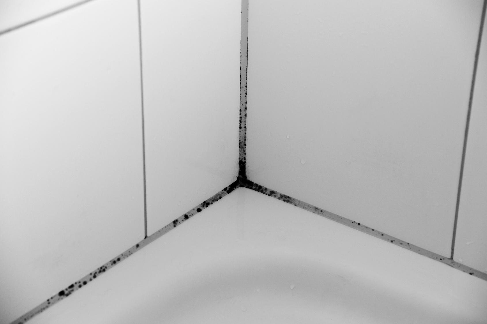 wartungsfreie dehnfugen im bad - sanitär schwarz gmbh